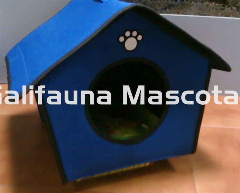 Caseta de lona azul para perro mediano o peque o for Caseta perro pequeno