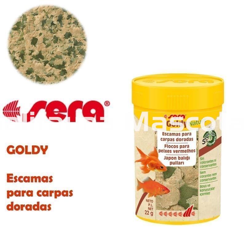Sera goldy alimento para carpas y otros peces agua fria for Peces de agua fria carpas